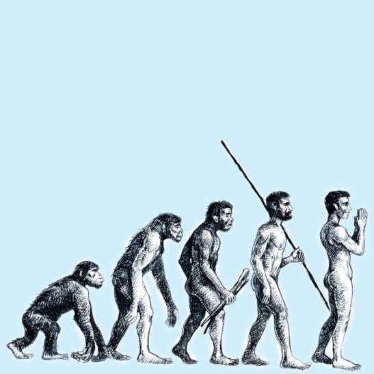 richtige evolution
